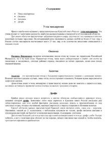 Доклад без изображений - Образец - 7 класс