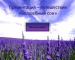 Карманова Диана-путешествие