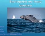 Сторожева Ирина Кибалина Софья — викторина океаны